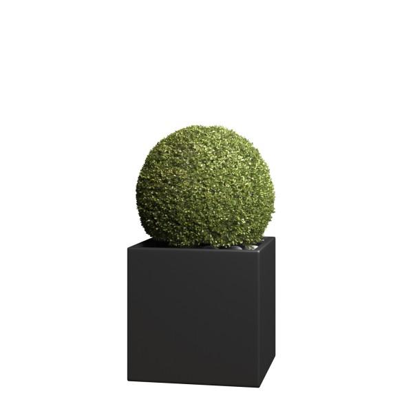 Pflanzkübel Kubus Medium in Schwarz